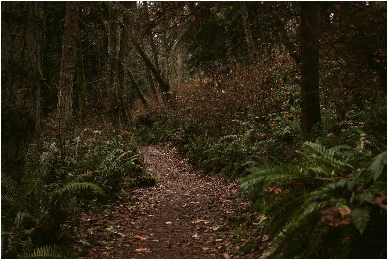 Adventures In Washington – Dec 18th – Big Gulch Trail