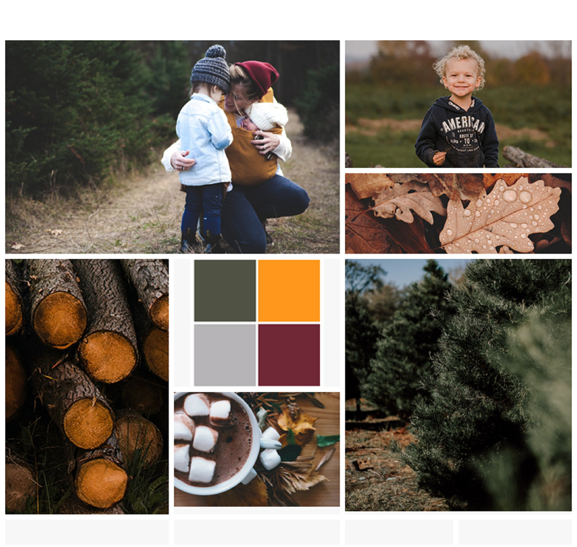 Late Fall Family Photos Event Mood Board_0001